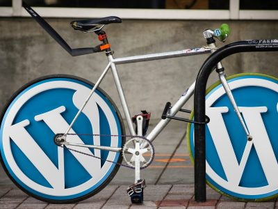 WordPress Schulung