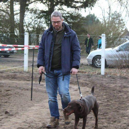 versicherungen für Tiere